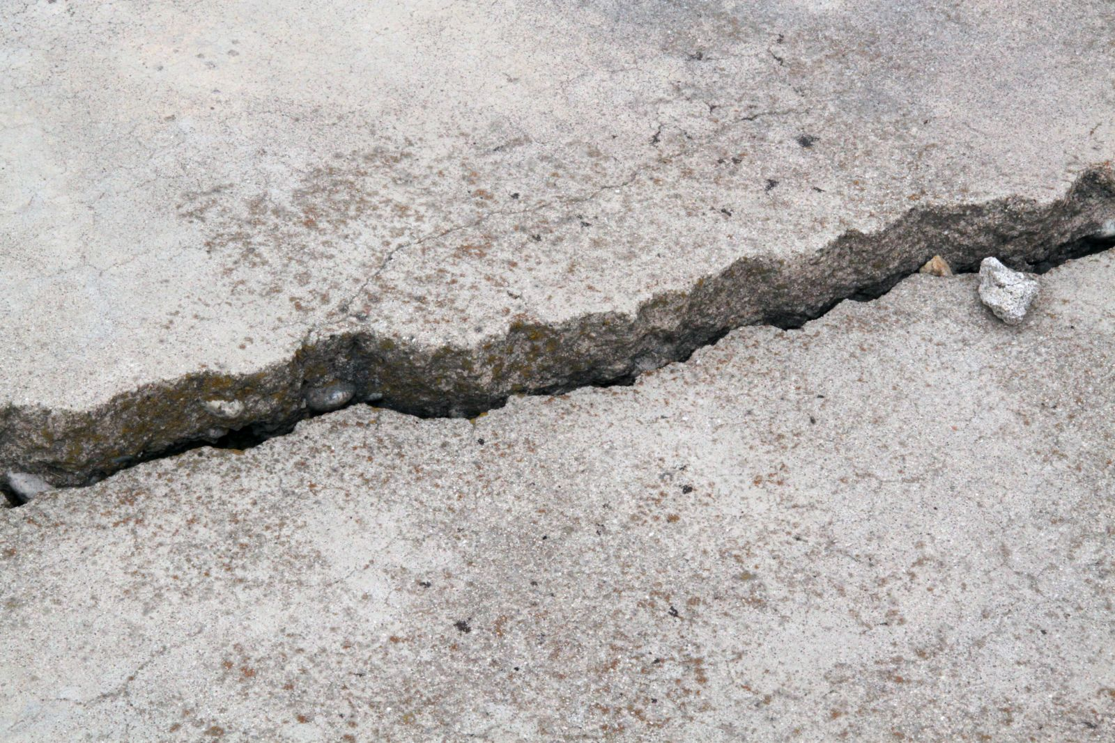 beton bescherming van gebouwen Vereniging van beton reparatie bedrijven